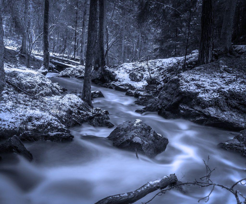 l'inverno la stagione del rene